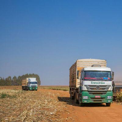 Control de Productividad Carga y descarga de granos